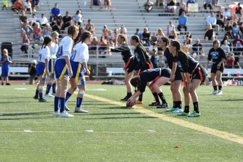 Slideshow: powderpuff