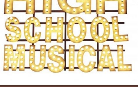 High School Musical cast chosen